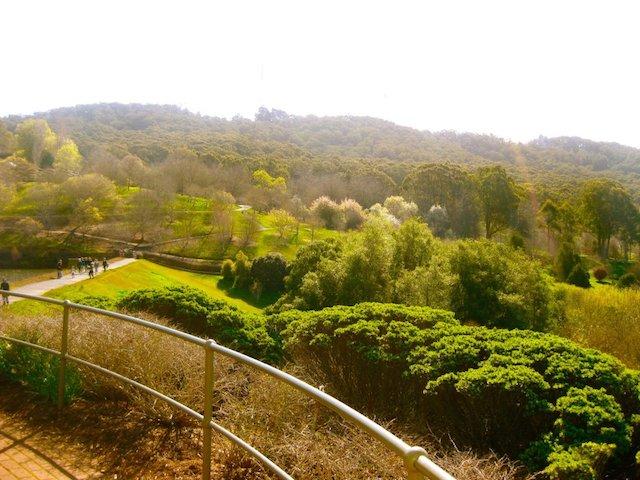 mt lofty botanical gardens; adelady