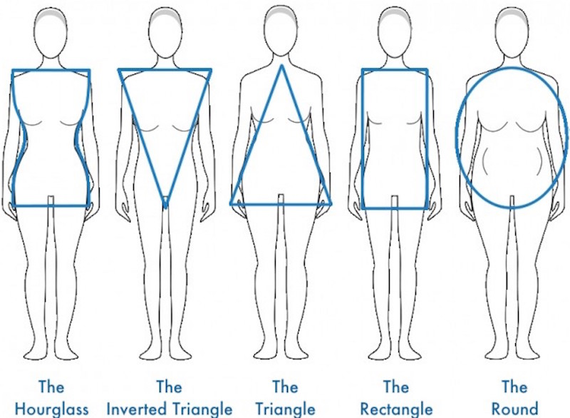 Body-Shapes-800x507 (1)